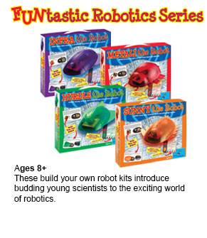 Click for Funtastic Robotics