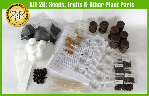 SS-925-1128 Kit 28: Seeds, Fruits, and other Plant Parts